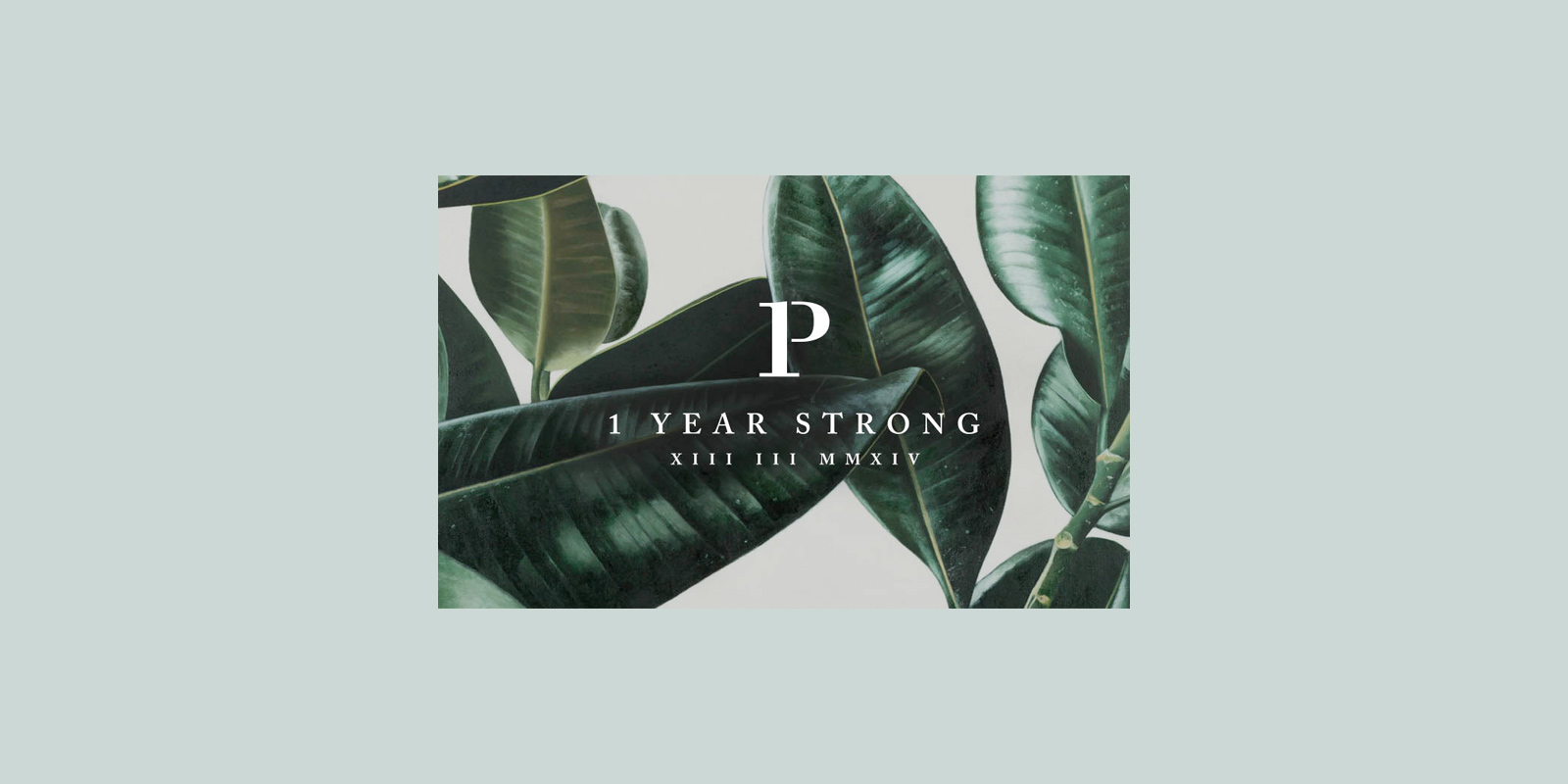 P & Co – One Year Strong
